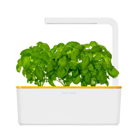 click and grow smart herb garden w l 3 refills basil smart herb garden click grow