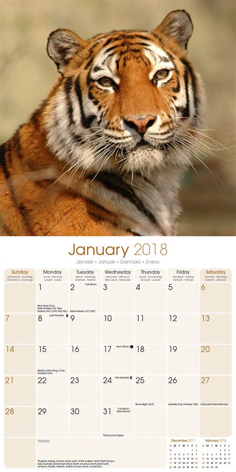 new year 2018 for tigers tigers calendar 2018 30130 18 wildlife animals