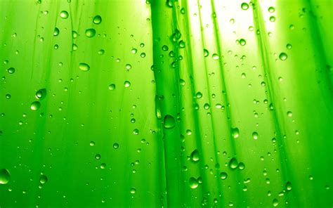 free green go green wallpaper free 3 green wallpapers free photos