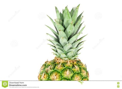 Pineapple Top top of the pineapple stock photos image 18416853