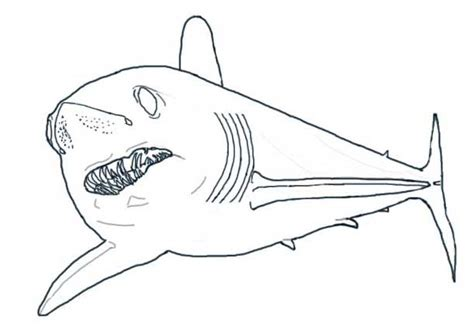 free mako mermaids coloring pages