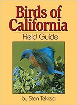 field guide california birds information birds of california field guide bird identification guides stan tekiela 9781591930310
