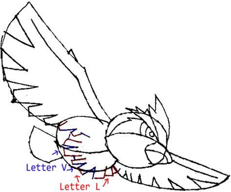 L Drawing Easy by How To Draw Pidgey From With Easy Step By Step