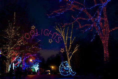 zoo lights cleveland cleveland zoo lights decoratingspecial