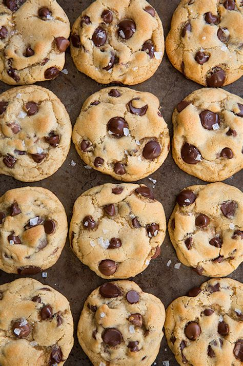 best chocolate chip cookie best chocolate chip cookies recipe dishmaps