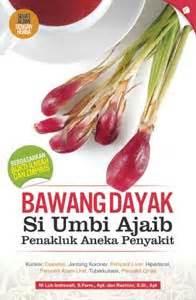 Bawang Tiwai Asli Dayak Borneo Utk Kanker Rematik Asam Urat Kolesterol bawang dayak si mutiara borneo dengan segudang khasiat bawang dayak asli kalimantan
