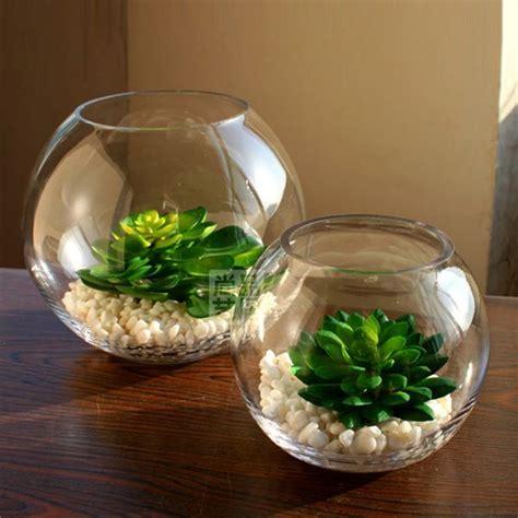 1000 ideas about vase fish tank on pet fish