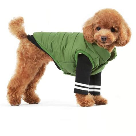 puppy clothes for cheap get cheap large clothes aliexpress alibaba