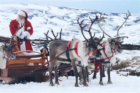 top 12 things to do this winter in the cairngorms