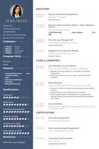 vice president resume sles visualcv resume sles