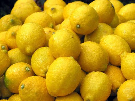 Lemon Detox Stockists Sydney by Free Lemons Stock Photo Freeimages