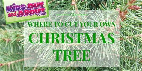 christmas tree farms in around houston tx kids out