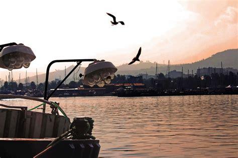 di commercio san benedetto tronto mercato ittico san benedetto tronto lory pesca