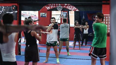 in the fascist bathroom punching back greek gym trains for anti fascist action rocketnews top news