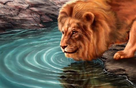 imagenes de leones en movimiento fondo pantalla leon dibujo