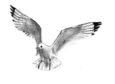 file m 229 ken jonathan1 jpg wikimedia commons