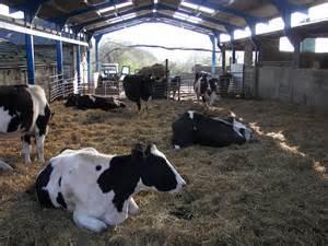Farm House Plans hotel r best hotel deal site