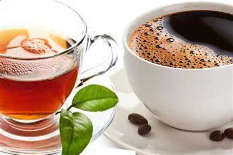 Dispenser Kopi Dan Teh manfaat kesehatan tersembunyi dalam kopi dan teh resep
