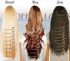 1 inch of hair 1000 ideas about hair length chart on pinterest hair
