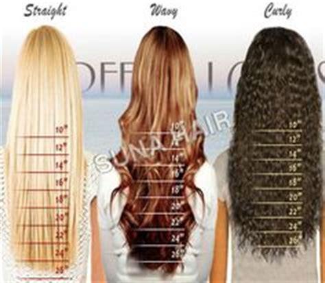 1 inch of hair 1000 ideas about hair length chart on pinterest hair