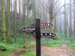Have you ever thought of visiting alishan national park what other
