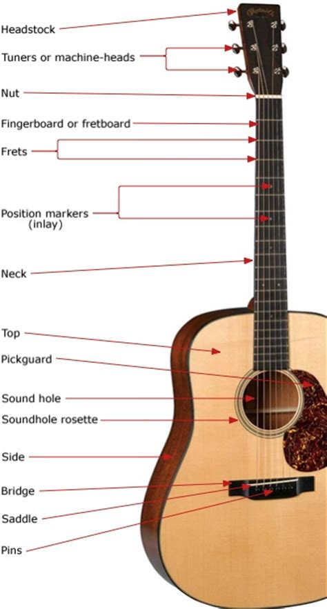 how to play guitar in 1 day the only 7 exercises you need to learn guitar chords guitar scales and guitar tabs today best seller volume 3 books guitar anatomy the parts of electric and acoustic