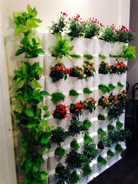 vertical gardening brings your walls to minigarden us