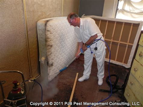 can you freeze bed bugs methods of bed bug control