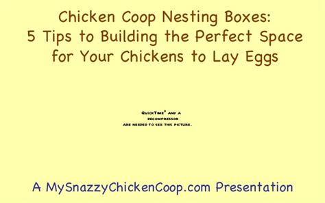 perfect spacing how to lay out a nursery project nursery nesting box plans for chickens best woodworking ideas