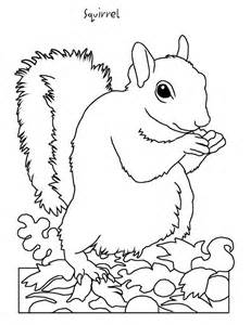 Hibernating Animals Coloring Pages Coloring Home