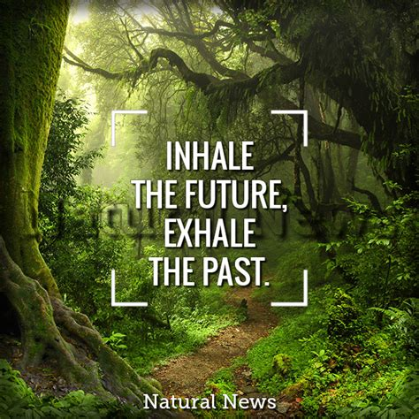 inhale the future exhale the past naturalnews com