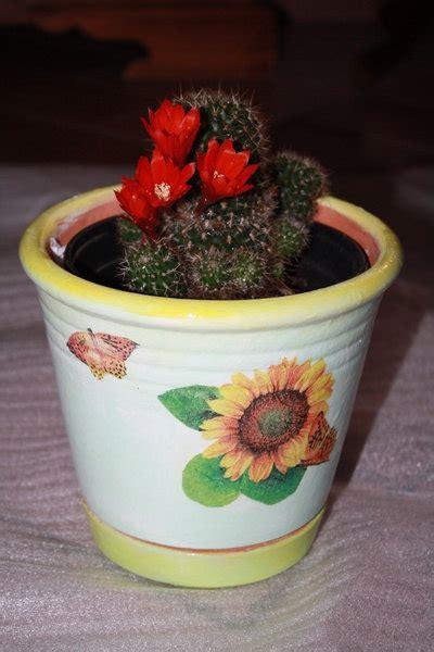 vasi di coccio vasi di coccio decorati per la casa e per te decorare