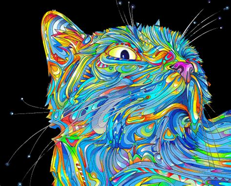 wallpaper gif psychedelic and here s my collection of trippy cat gifs album on imgur