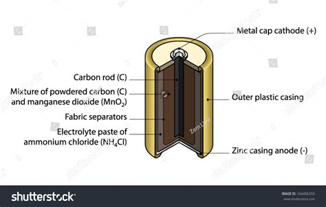 diagram of battery cell crosssection cutaway diagram cell battery stock vector