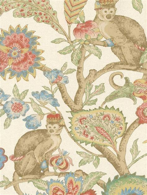 monkey wallpaper for walls wallpaper gt gt monkey bathroom possibilities halifax house
