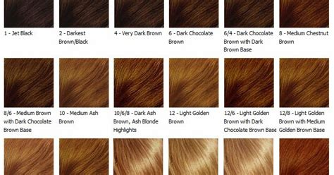 brown hair color chart brown hair color chart medium brown hair colour chart coloring coffee milk brownsugar by c s finding your hair color