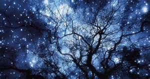 Winter Solstice Decorations - starry skies lola s curmudgeonly musings about life love amp other trifles