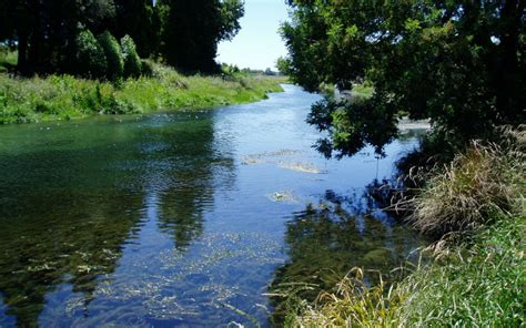 thames river water quality report river water quality marlborough district council