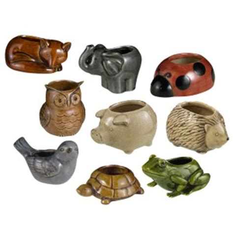animal pots the best pots for carnivorous plants skulls and turtles