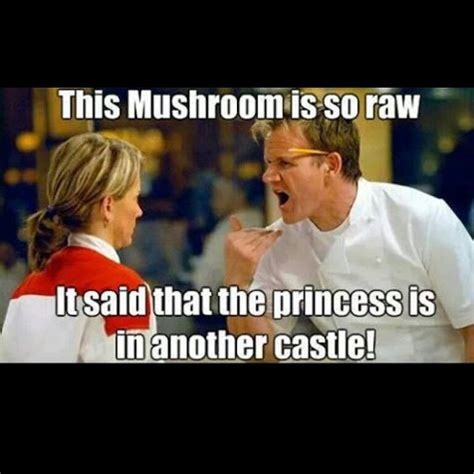 Best Gordon Ramsay Memes - 38 best images about gordon ramsay quotes on pinterest