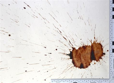 bloodstain pattern photography bloodstain pattern analysis forensic experts