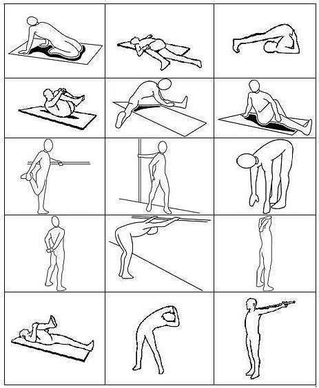 posizioni sessuali seduti 1000 idee su esercizi per la schiena su