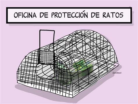 oficina proteccion oficina de protecci 243 n de ratos pedripol