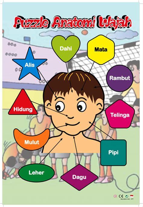 Mainan Edukatif Edukasi Anak Puzzle Stiker Anatomi Wajah Our Fac Puzzle Stiker Anatomi Wajah Laki Laki Mainan Kayu