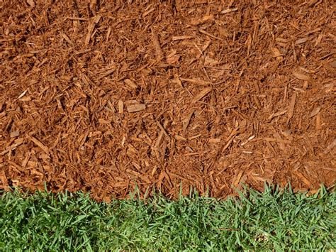top 28 which type of mulch is best types of mulch