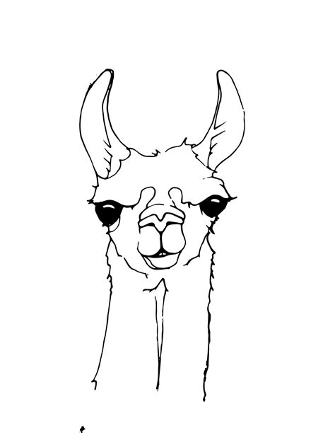 llama drama colouring for llama drama books trend llama coloring pages 75 for your line drawings with