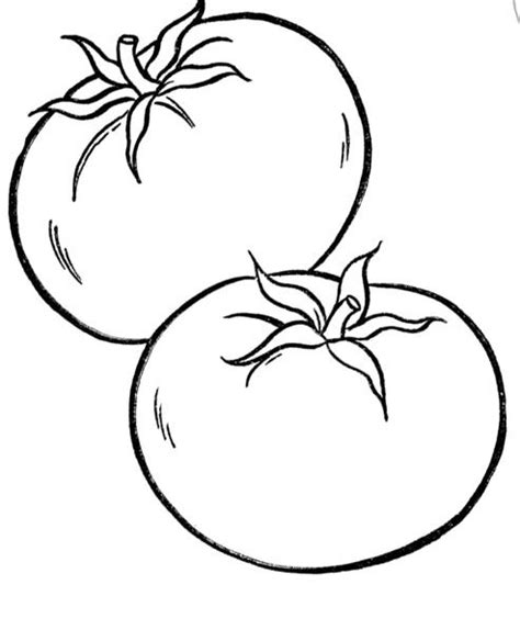 tomato coloring page new calendar template site