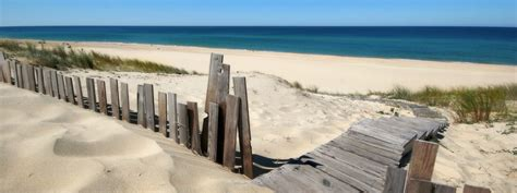 delaware real estate vacation rentals