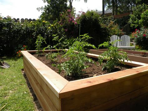 Building A Planter Box For Vegetables by Building Vegetable Boxes For A Garden California