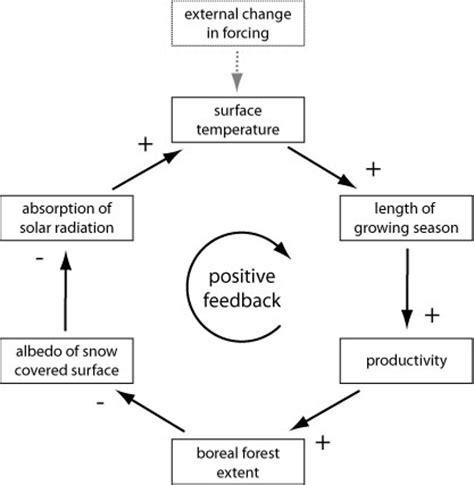 feedback loop diagram negative feedback loop diagram